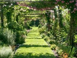 Botanical Gardens Images by Notable Public Gardens Of New England Harvard Magazine