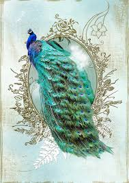 peacock turquoise peacock turquoise vintage shabby chic digital by readyforyoga