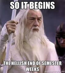 memes about end of semester google search teacher humor