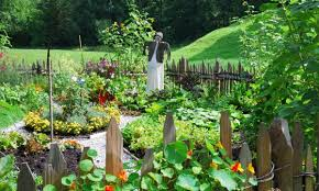 10 key pointers for starting a vegetable garden smart tips