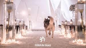 Hotel De Glace by Quebec Wedding Destination Hôtel De Glace On Vimeo