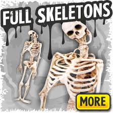 Halloween Props Skeleton Props U0026 Poseable Skeletons Halloween Fx Props