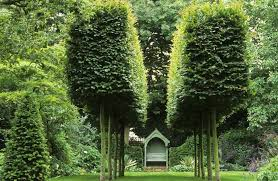 Formal Garden Design Ideas Large Formal Garden Design And Photos Madlonsbigbear