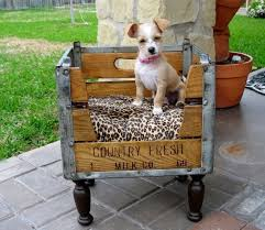 Best 25 Crate Bed Ideas by 8 Best 25 Fabulous Diy Pet Bed Ideas Part 2 Images On Pinterest