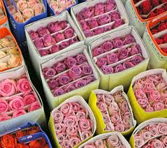 los angeles florist blossom valley the los angeles flower market