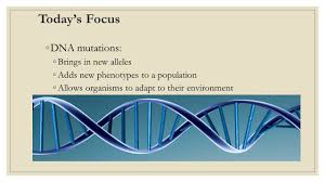 genes and evolution unit eight principles of evolution 1 genetic