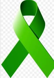 emerald green ribbon 30 best list of cancer awareness ribbons images on