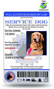 amazon com xpressid holographic service dog id card custom