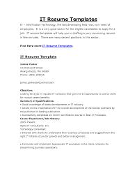 Director Of It Resume Download It Resume Samples Haadyaooverbayresort Com