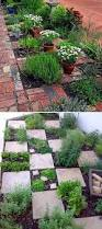 family vegetable garden 22 ways for growing a successful vegetable garden amazing diy
