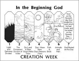 best 25 days of creation ideas on creation bible