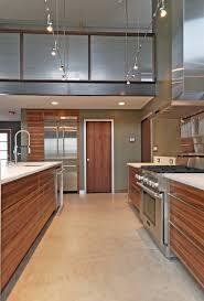 zebra wood cabinets kitchen modern with concrete floor low voltage
