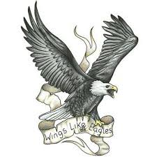 flying eagle design with wings of eagles pinteres