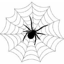 Web Coloring Sheet Spider Web Coloring Page