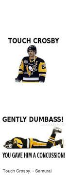 Sidney Crosby Memes - touch crosby gently dumbass you gave him a concussion touch