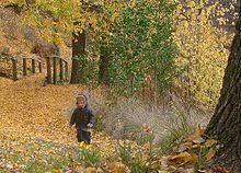 Kyneton Botanical Gardens Kyneton