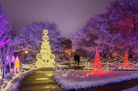 phipps conservatory christmas lights here we glow pittsburgh our stunning phipps conservatory and
