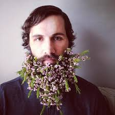 Meme Florist - flower beards image gallery sorted by comments know your meme