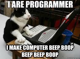 Programer Meme - are programmer