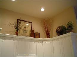 What To Put Above Kitchen Cabinets by Curio Cabinet Greenery Above Kitchen Cabinets Cabinet Tops
