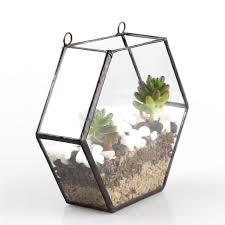 succulent plant flower pots geometric hexagon glass terrarium box