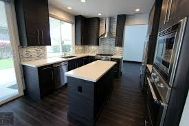 Kitchen Cabinet Orange County Modern Design Build Kitchen Remodel With Sophia Line Cabinets In