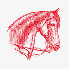 hand drawn sketch horse classic hand drawn sketch horse template