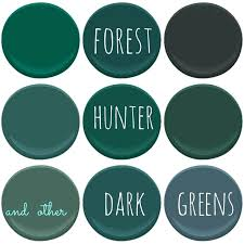 forest green color code shade design of the picture book dark green color pantone colors
