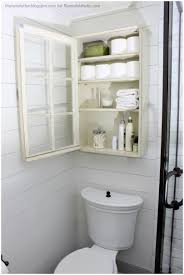 Storage Cabinets Lowes Bathroom Magnificent Storage Cabinets In Designing A Delectable