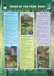 trees of the year posters