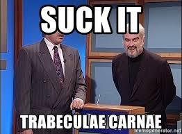 Suck It Trebek Meme - suck it trabeculae carnae alex trebek snl meme generator