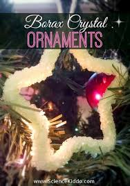 borax ornaments for science kiddo