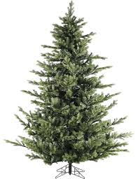 foxtail pine christmas tree traditional christmas trees by