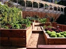 raised bed vegetable garden design u2013 exhort me