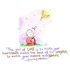 is beautiful amazing quote from buddha doodles molly hahn
