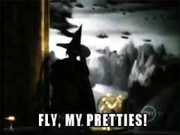 Flying Monkeys Meme - mrw i take my bra off at the end of the day gif on imgur