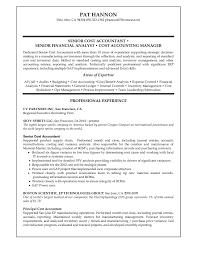 resume summary of experience accountant resume sample corybantic us senior accountant resume summary free resume example and writing accountant resume