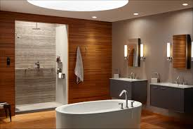 bathroom glass shower panel with cozy kohler whirlpool tubs and modern bathroom design with cozy kohler whirlpool tubs