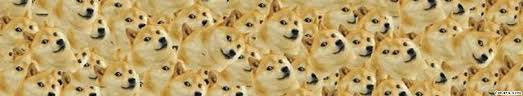 Doge Meme Youtube - not actually doge tumblr