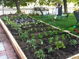 Small Kitchen Garden Ideas by Backyard 57 Small Backyard Vegetable Garden Small Vegetable