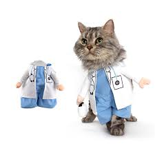 funny dog costumes halloween compare prices on doctor dog costume online shopping buy low