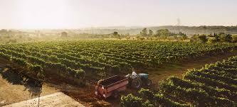 Kritiken Esszimmer Coburg Aktuelle Themen Zu Wein Falstaff