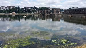Wehr Baden Freizeitfluss Und Schifffahrtsstraße Mosel Mehr Wasserpflanzen