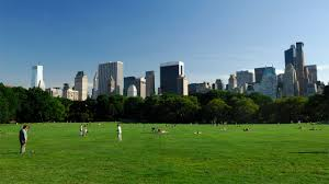 Central Park New York Google Maps by Luxury Hotels Nyc 5 Star Hotel Four Seasons New York