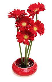 Ikebana Vases Ceramic Vases For Flower Arrangement Ikebana Vases By Janet