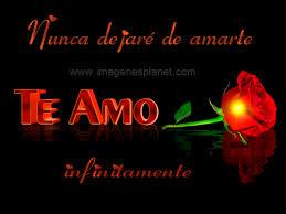 imagenes de amor con rosas animadas rosa roja con frases de amor tarjetas y postales animadas imágenes