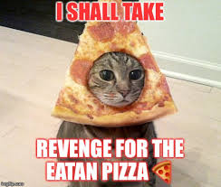 Memes About Pizza - pizza cat memes imgflip