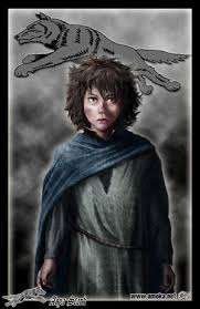Arya Goes Blind Arya Stark A Song Of Ice And Fire Wiki Fandom Powered By Wikia