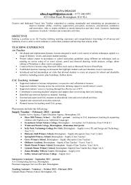Special Education Teacher Resume Art Teacher Cv