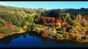 Mt Lofty Botanic Gardens Autumn Colours At Mount Lofty Botanic Garden 2017